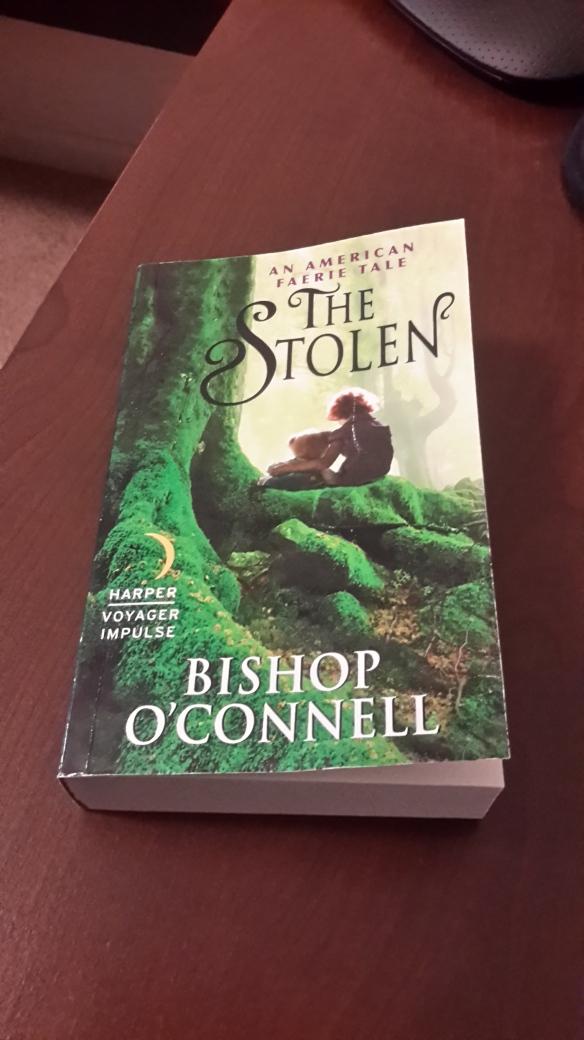 Stolen book cover