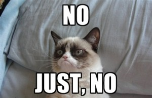 grumpy-cat-saying-no-4-300x193